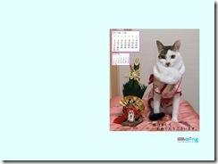 201101-fuu-1024_768