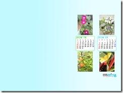 201207-flower_r-1024_768