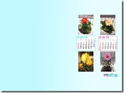 201208-flower-1024_768