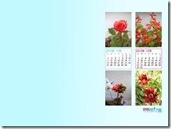 201211-flower-1024_768