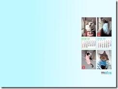 201304_fuu_haru-1024_768