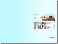 201402_fuu_haru-1024_768